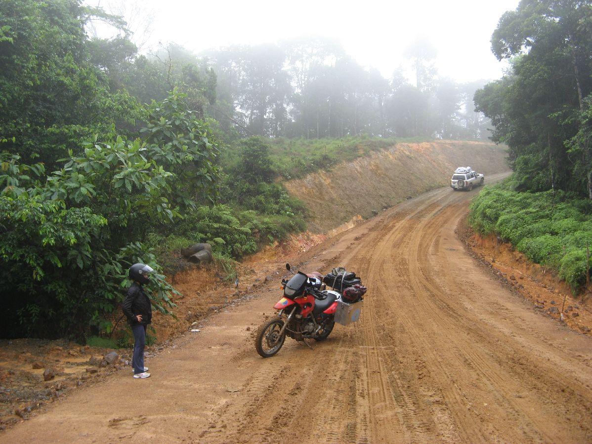 345 jungle
