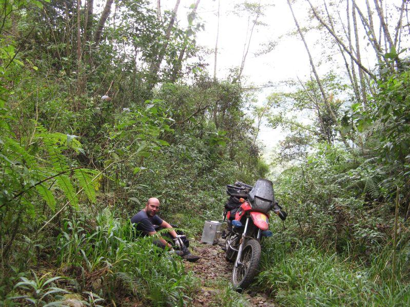 735 jungle